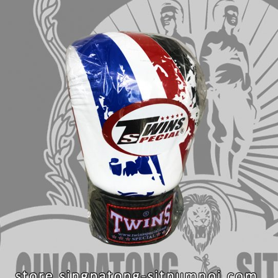 Twins Fancy Boxing Gloves THAI FLAG