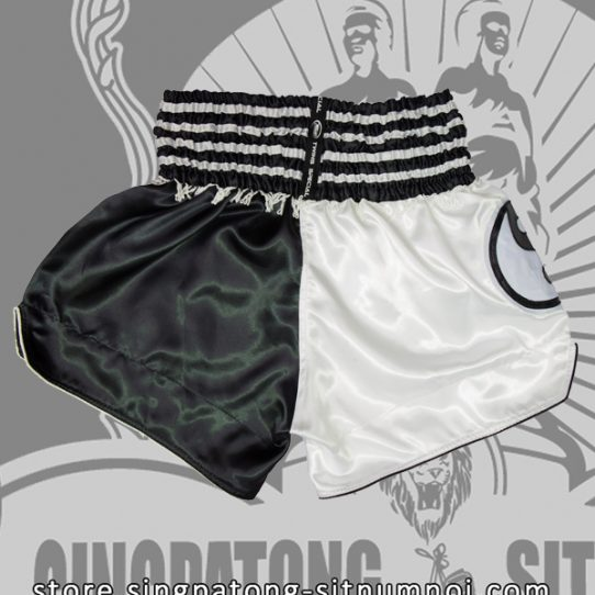 Muay Thai Shorts YIN YANG back