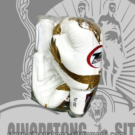 "Twins Fancy Boxing Gloves ""DRAGON MASTER"" White side"
