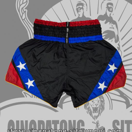 Twins Muay Thai Shorts BLACK AND BLUE STAR back