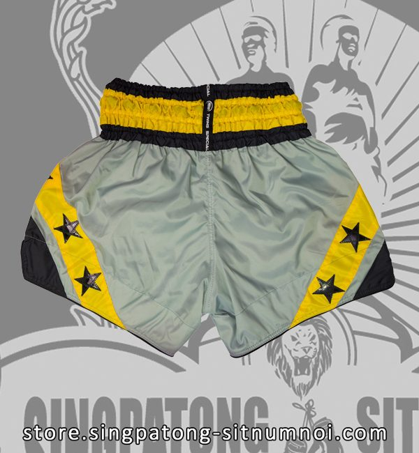 Twins Muay Thai Shorts YELLOW STAR back