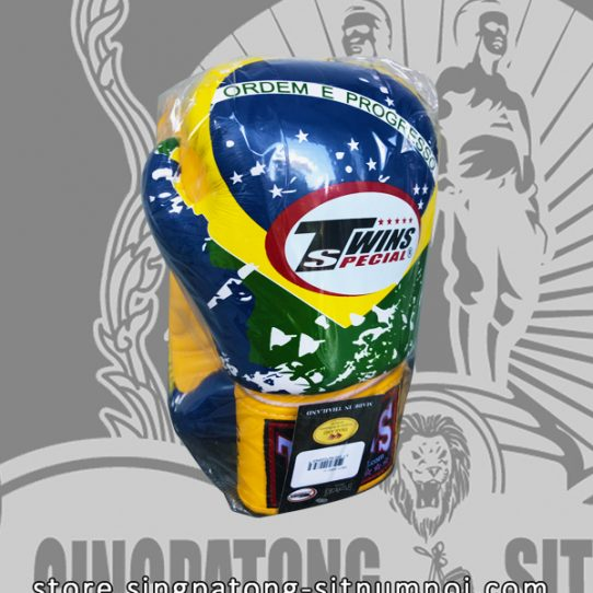 Twins Fancy Boxing Gloves BRAZIL Flag