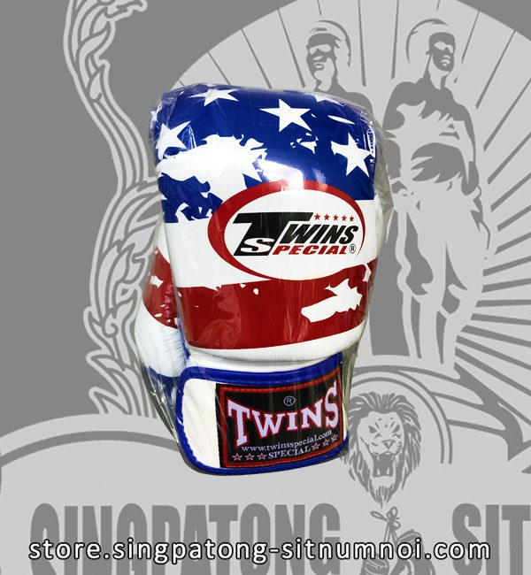 Twins Fancy Boxing Gloves USA Flag