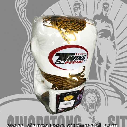 """Twins Fancy Boxing Gloves """"DRAGON MASTER"""" White"""